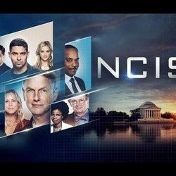 『NCIS』のあの人、CBSスタジオと契約!複数のプロジェクトが進行中