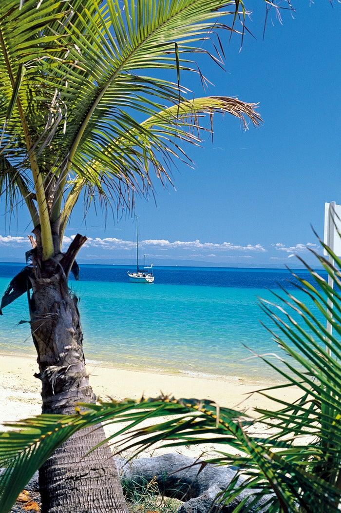 世界で3番目に大きな砂の島・モートン島(提供画像)