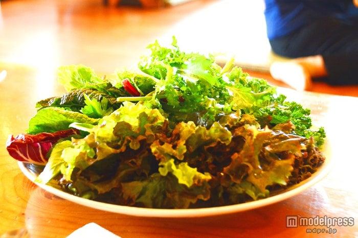 新鮮な有機野菜をたっぷり食べられる