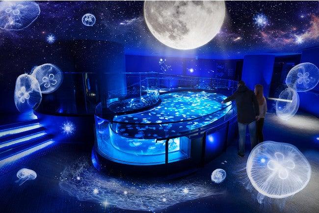 「月とクラゲ」(イメージ)/画像提供:すみだ水族館