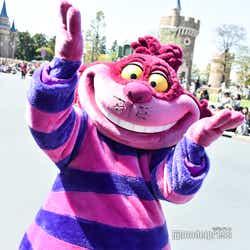 東京ディズニーランド/チェシャ猫/パレード「ドリーミング・アップ!」(C)モデルプレス(C)Disney