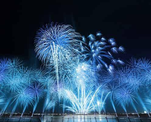 大阪「泉州夢花火」2021年8月開催へ、東西花火やスターマイン打ち上げ