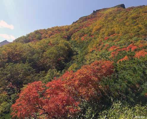 日本一早い秋の訪れ 北海道の屋根・大雪山系の紅葉が鮮やかすぎる