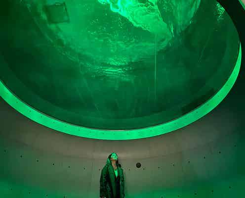 四国最大級の水族館「四国水族館」館内展示公開