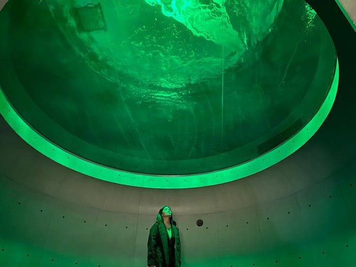 神無月の景/画像提供:四国水族館開発