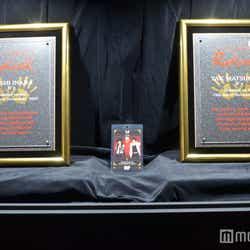 Hollywood's RockWalk受賞時の盾(C)モデルプレス