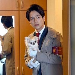 溝端淳平「天国と地獄 ~サイコな2人~」第7話より(C)TBS