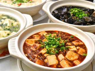 え?こんな麻婆豆腐って見たことない! 5種類の絶品メニューを味くらべしよう!