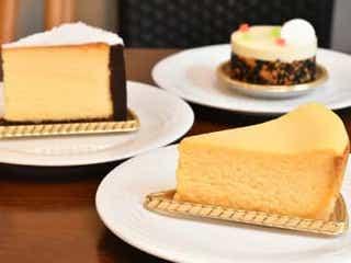 チーズケーキ好きならもう知ってる?5種類の食べ比べも楽しいレジェント級の名店!