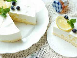 初心者さんにもおすすめ!混ぜて冷やして固めるだけのトロピカルレアチーズケーキ