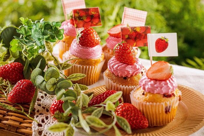 Strawberry Picnic/画像提供:ワイズテーブルコーポレーション