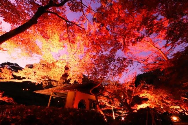 画像提供:八芳園