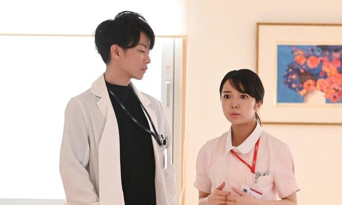 (左から)佐藤健、上白石萌音(C)TBS