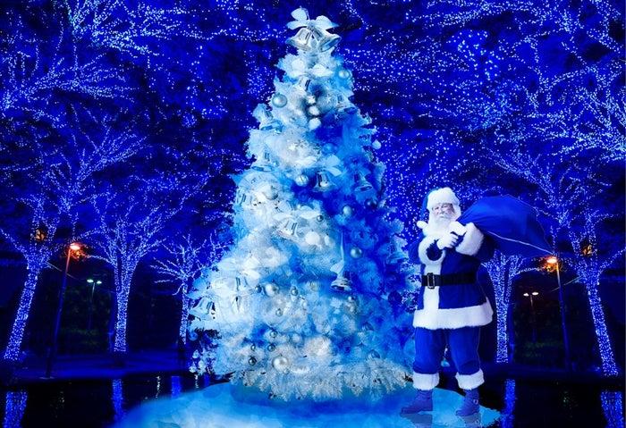渋谷イルミ「青の洞窟」でホワイトクリスマス 雪が幻想的な世界へ誘う/画像提供:日清フーズ