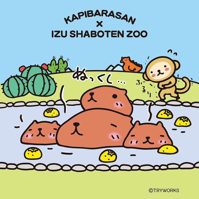 「カピバラさん」×「伊豆シャボテン動物公園」コラボレーションイメージ(C)TRYWORKS