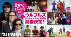 ウルフルズ主催対バンツアー、アーティスト最終発表!名古屋公演にクリープハイプの出演が決定