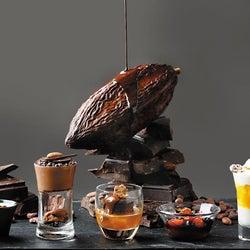 世界中のチョコレートを食べ比べ スイーツブッフェが繊細で美しい