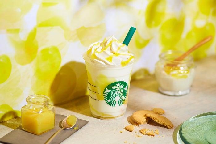 レモン ヨーグルト 発酵フラペチーノ Tall ¥630/画像提供:スターバックス コーヒー ジャパン