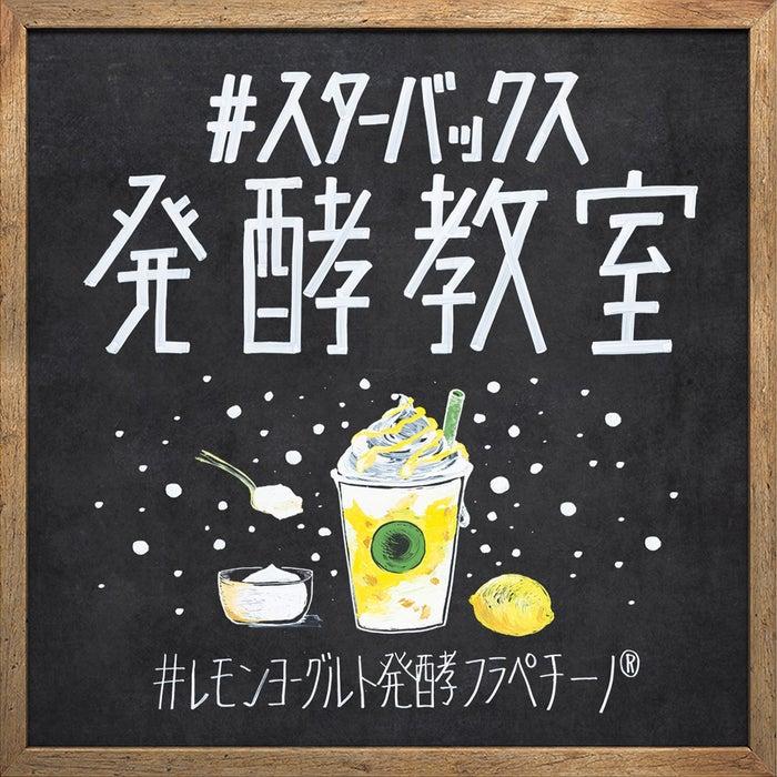 発酵のWONDERを楽しく知ってもらう、#スターバックス 発酵教室を公式SNSで開講/画像提供:スターバックス コーヒー ジャパン