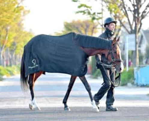 【天皇賞】メロディーレーン67年ぶり牝馬Vへ 最年少V懸かる19歳・岩田望が導く