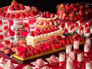 夜限定デザートブッフェ「いちごジャーニー」横浜で、ケーキやタルト&新鮮いちご6種も食べ放題