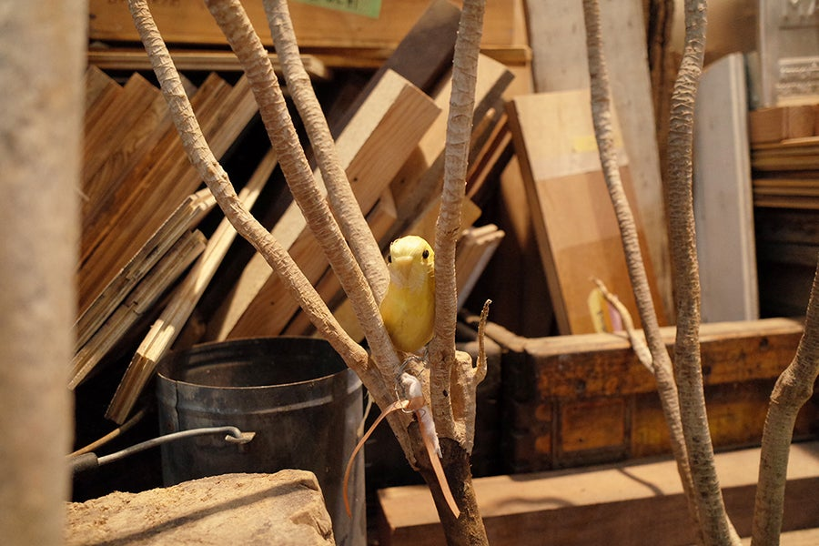 BARRACK 小鳥の人形