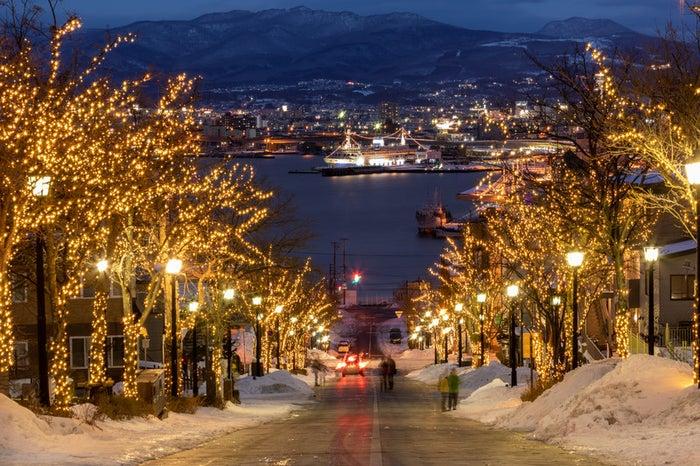 ライトアップされた函館八幡坂から見る港/photo by ぱくたそ