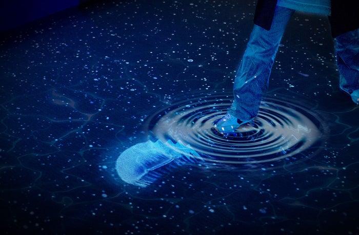 水の上を歩くと波紋が広がる/画像提供:オリックス株式会社