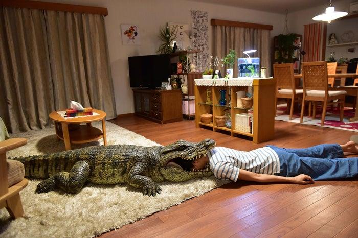 榮倉奈々(C)2017「家に帰ると妻が必ず死んだふりをしています。」製作委員会