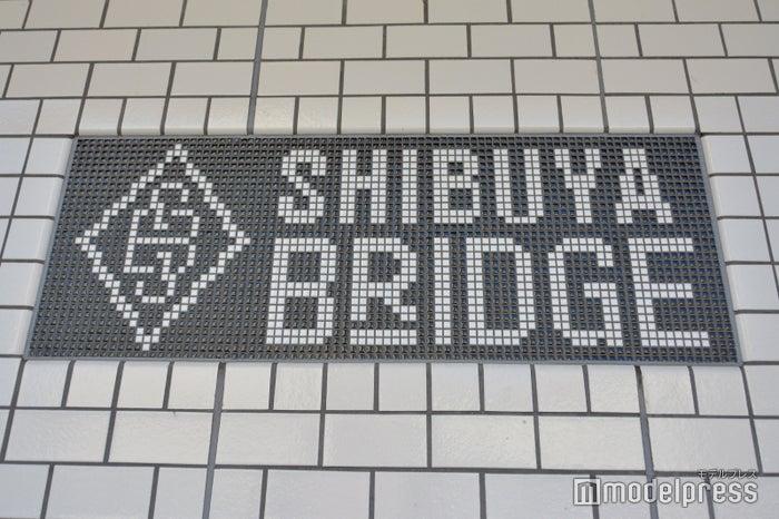 渋谷ブリッジ (C)モデルプレス