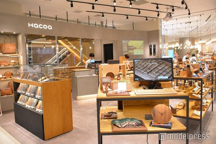 Hacoa(C)モデルプレス