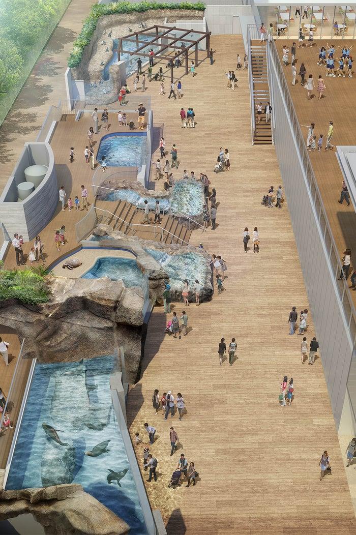 アクティブフィールド/画像提供:四国水族館開発