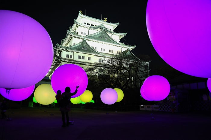 名古屋城と光のアートがコラボ 昼とは違う幻想的な表情/画像提供:W TOKYO