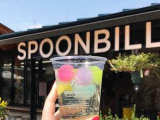 まるで西海岸!緑に囲まれたボタニカルカフェ「SPOONBILL天王寺」
