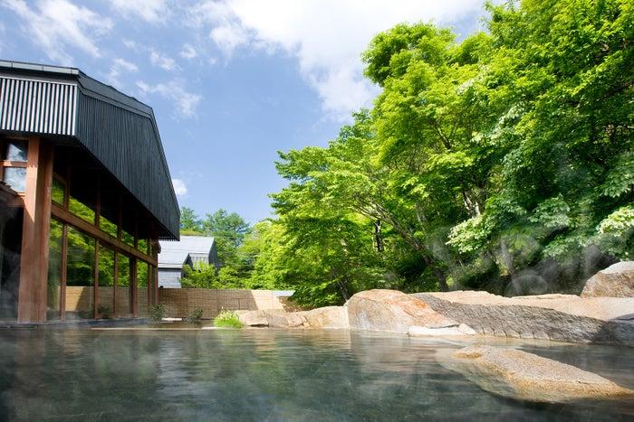 源泉かけ流しの「星野温泉 トンボの湯」(提供画像)
