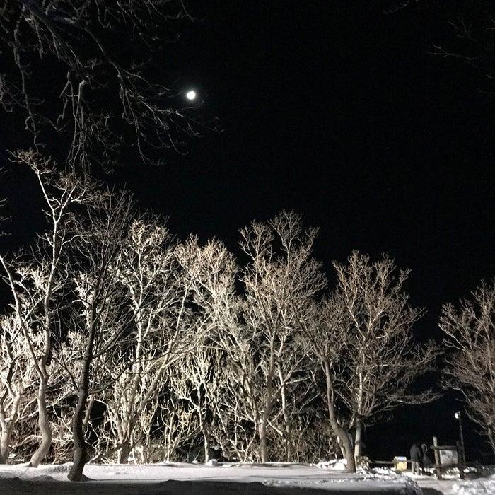 知床流氷フェス(提供写真)