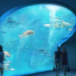 四国 水族館