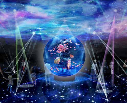 神戸に新感覚水族館「アトア」いきもの×アートが融合する幻想的な8つの世界