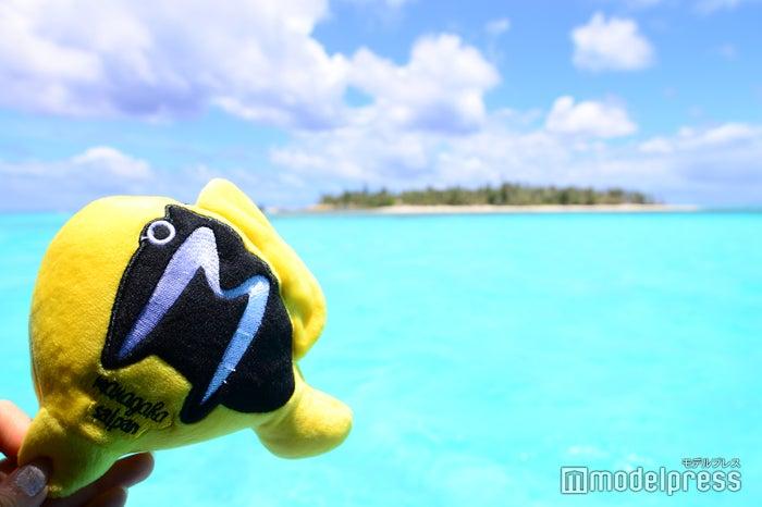 マニャガハ島(C)モデルプレス