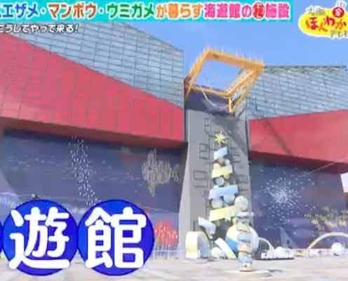 秘密の施設が高知県に?大阪・海遊館の知られざる裏側とは