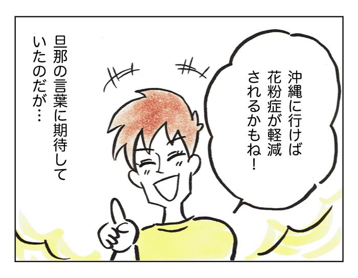 症 沖縄 花粉