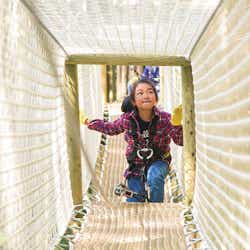 六甲山アスレチックパーク GREENIA/画像提供:六甲山観光