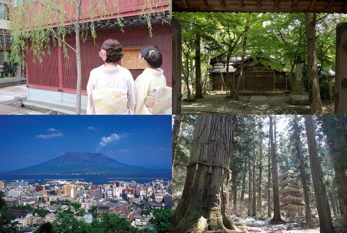 (右上から時計回り)酒田(写真提供:酒田市)、鹿児島((C)K.P.V.B)、金沢(写真提供:金沢市)
