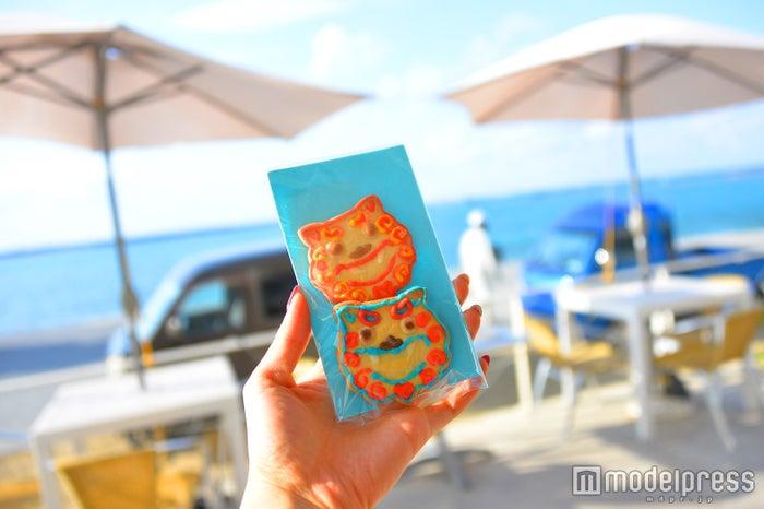 シーサーのクッキー¥320(税抜)(C)モデルプレス