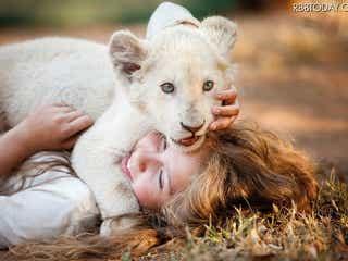 赤ちゃんライオンの可愛すぎる映像が公開に!映画『ミアとホワイトライオン』