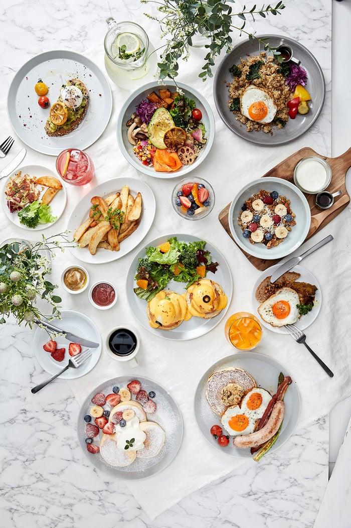 """Egg Farm to Table""メインビジュアル/画像提供:ベイクルーズ"