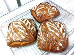 今日17時から奥渋谷で3週間限定オープン!パリのスゴ腕パン職人による、ぱんや居酒屋『アヒルの夏休み』