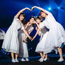 守屋茜、菅井友香、渡辺梨加、渡邉理佐「2nd YEAR ANNIVERSARY LIVE」(提供写真)