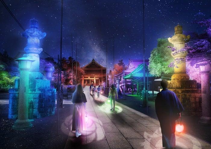 参道ライトアップ-光の響縁-/画像提供:ネイキッド