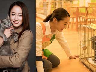 沢尻エリカ「ヘルタースケルター」以来6年ぶり映画主演 元アイドル役でダンス&歌唱披露も<猫は抱くもの>